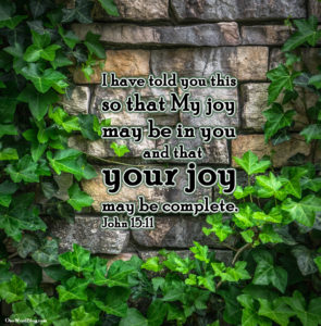 I have told you this so that My joy may be in you and that your joy may be complete. John 15:11