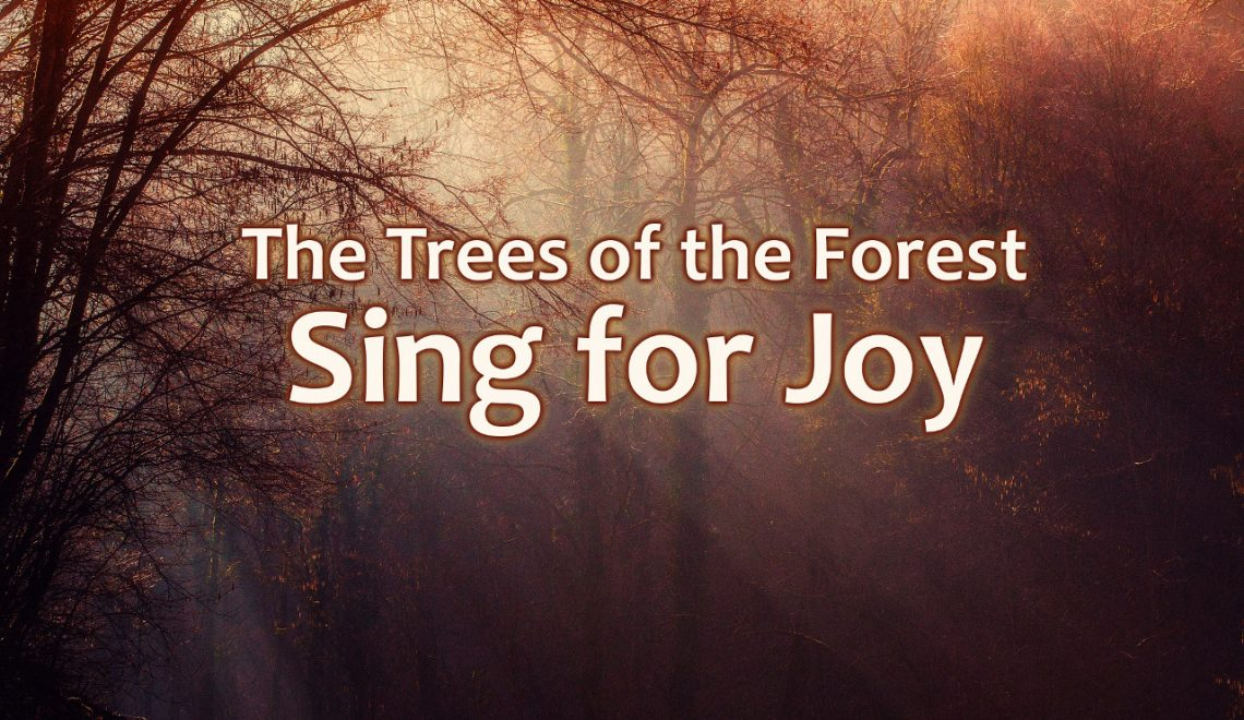The trees of the forest sing for joy before the Lord.